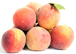 Can, freeze or dry peaches for later enjoyment